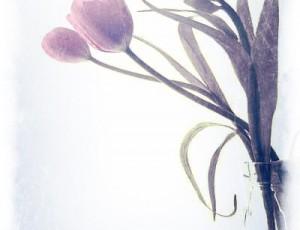 pozdravlenie-s-prazdnikom-8-e-marta